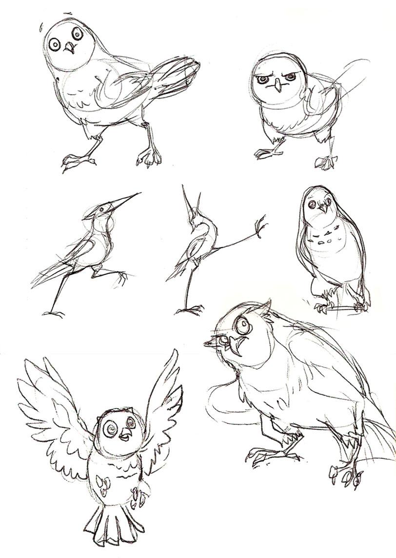 Birdybirdybirdy!